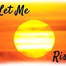 Let me Rise  by Sunil Bhardwaj