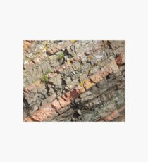 A slice of geology Art Board Print