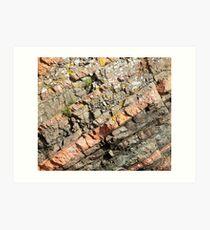 A slice of geology Art Print