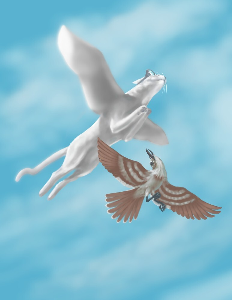 Quicksilver the Cat...imagines flying by Brandon S.