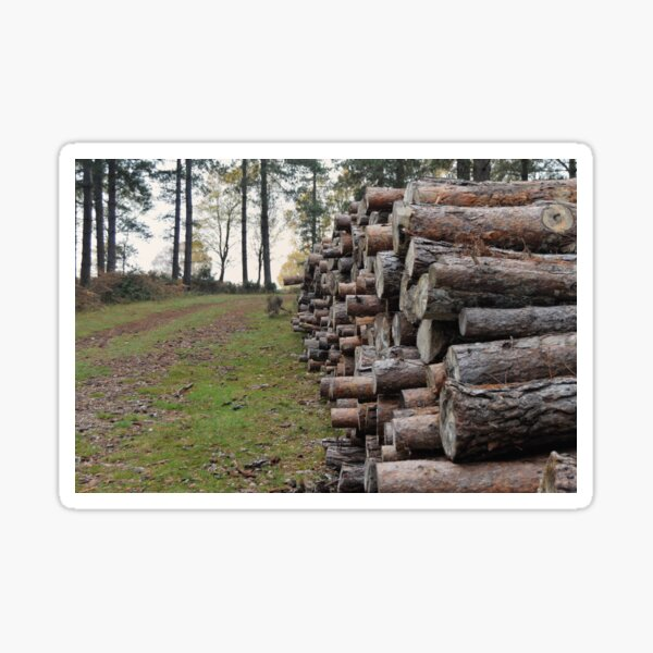 log pile, New forest Sticker