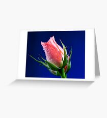 Pink Insight Greeting Card