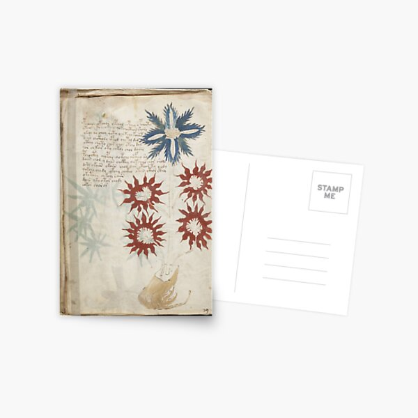 Voynich Manuscript. Illustrated codex hand-written in an unknown writing system Postcard