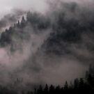 Hill fog by arawak