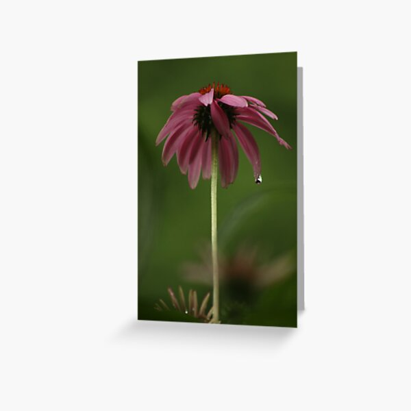 Feeling Lonely on a Rainy Day Greeting Card