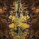 Autumn Jewel - 2 by Ann Garrett