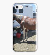 paint horse iPhone Case/Skin