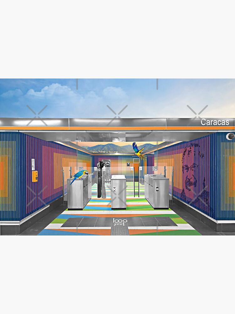 Un pedacito de arte y cinetismo del gran maesto Cruz Diez en el metro de Madrid de LoopYou