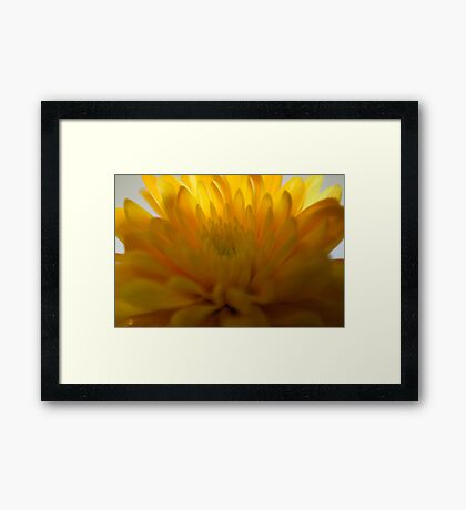 yellow and light Framed Print
