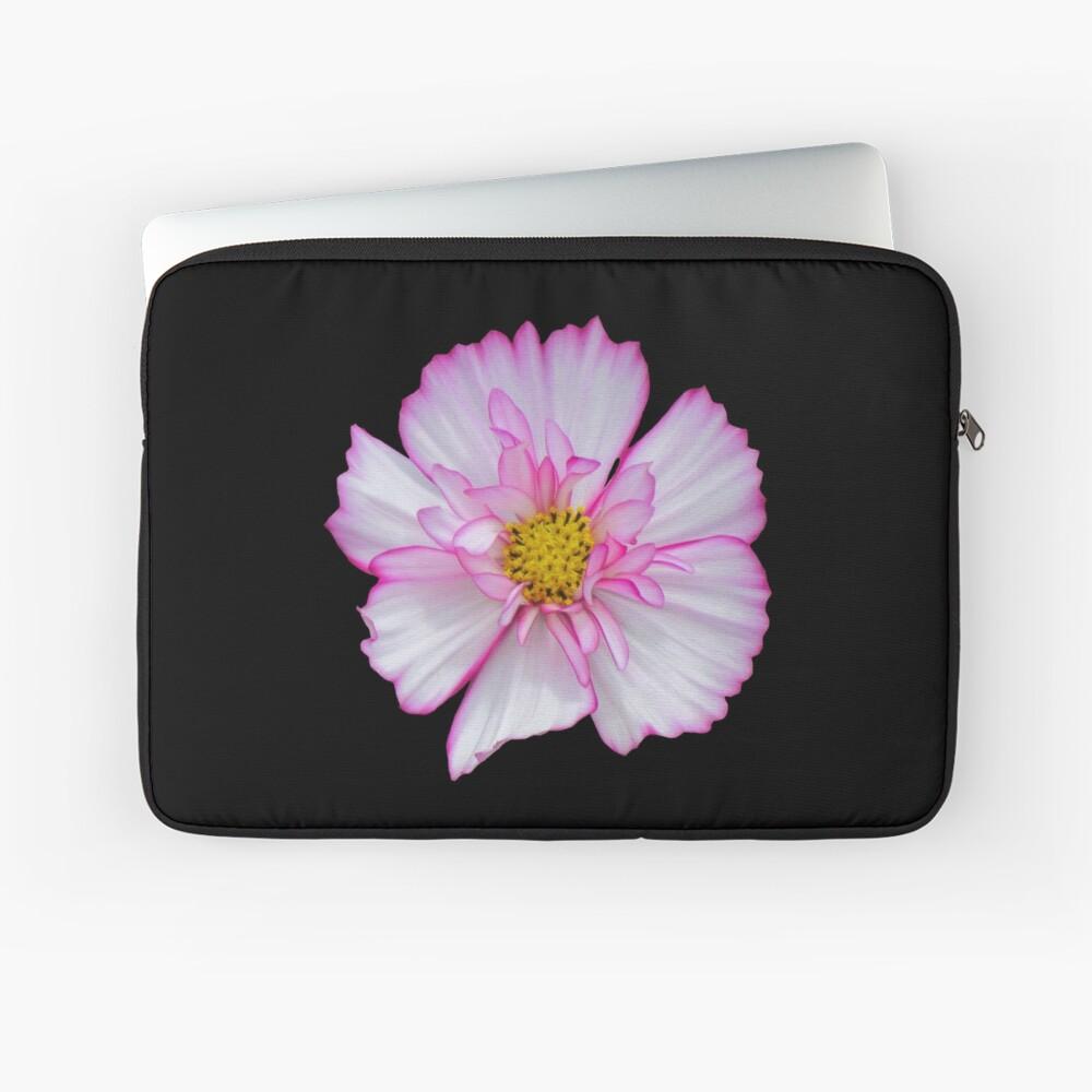 Blume in pink & weiß, Blumen, Blüte, Garten, Natur Laptoptasche