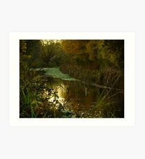 Autumn in Surrey Art Print