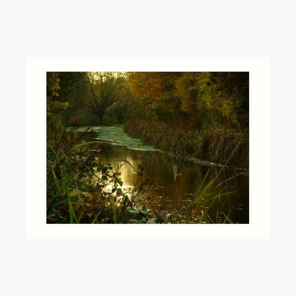 Autumn in Surrey Art Print