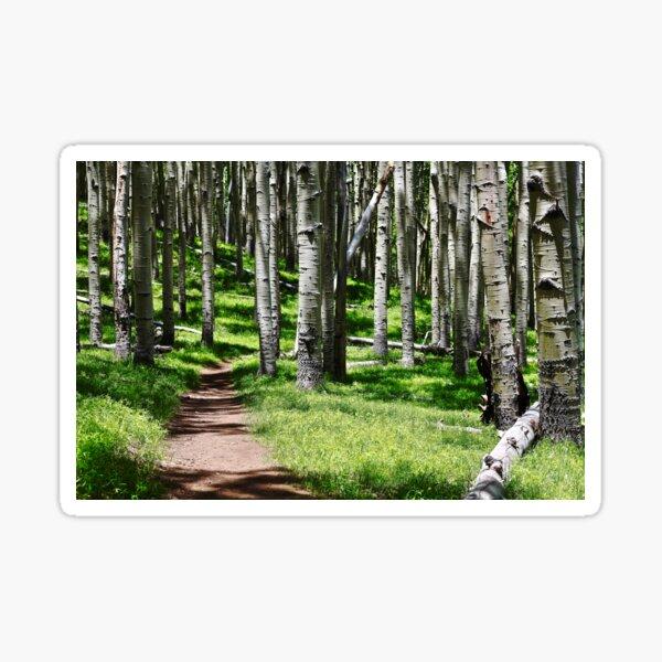 Aspen Path Sticker