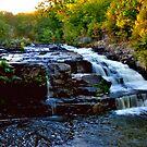 Shohola Falls # 1 by Debra Fedchin
