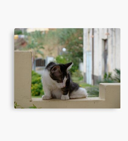 Seriously Canvas Print