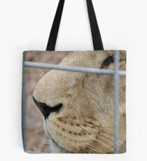 Lion - Zoo Arcachon Tote Bag