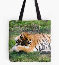 Tiger - Zoo Arcachon Tote Bag