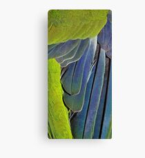 texture and background of colored feathers parrot - plumage Canvas Print