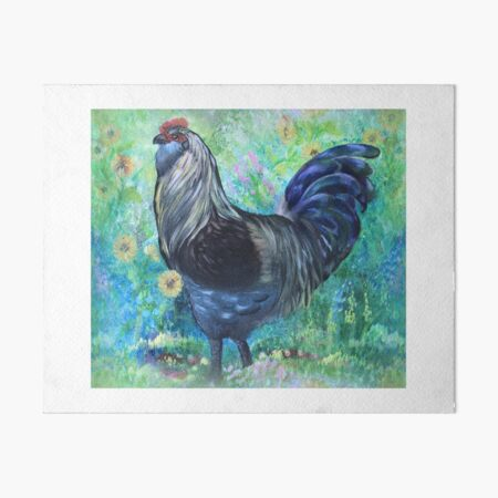 Easter Egger Rooster in Acrylic Art Board Print