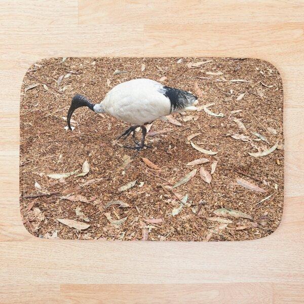 Australian Ibis Bird Bath Mat