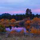 Fall in the High Sierra by Justin Baer
