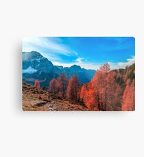 Cloudy autumn day in the italian alps Metal Print