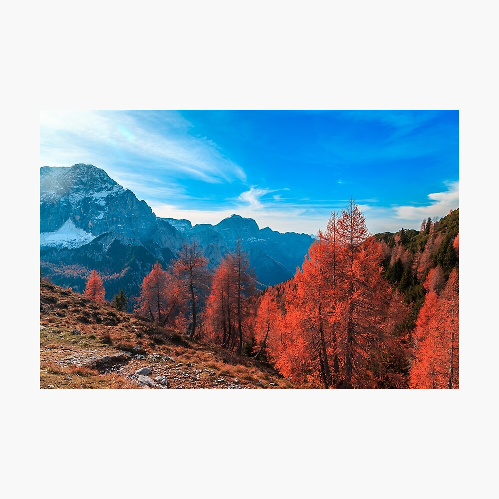 Cloudy autumn day in the italian alps Photographic Print