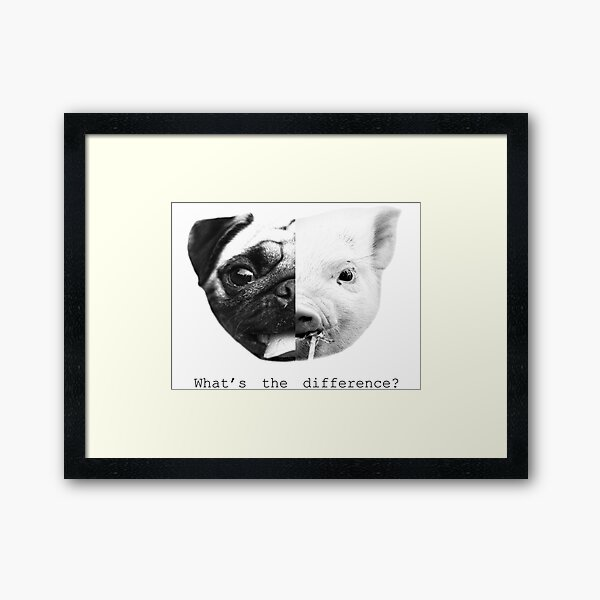 Pig/pug what's the difference? Framed Art Print