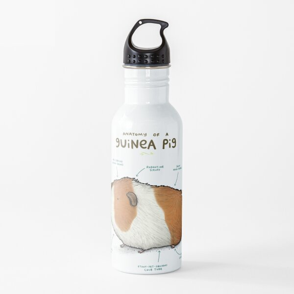 Anatomy of a Guinea Pig Water Bottle