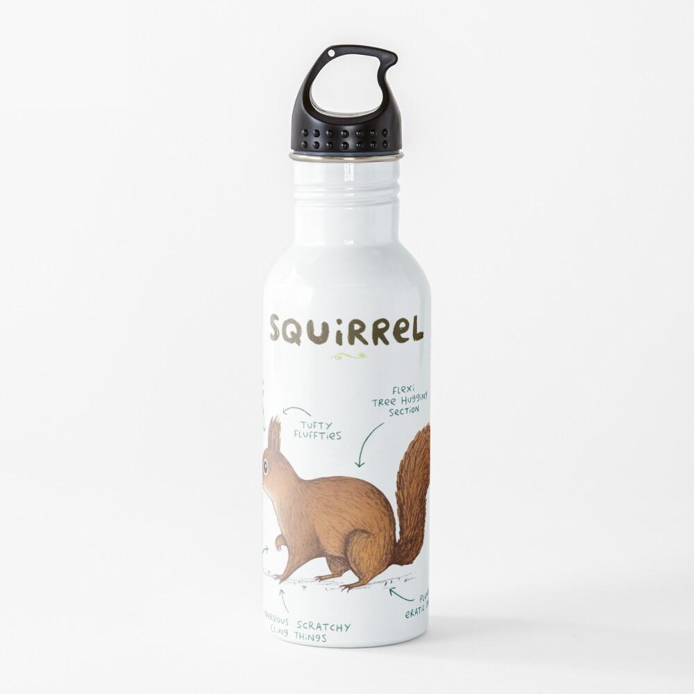 Anatomy of a Squirrel Water Bottle