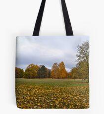 Tiergarten im Herbst Tote Bag