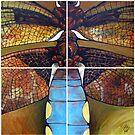 The dragonfly by Donata Zawadzka