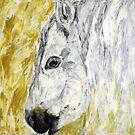 Pony by Lidiya