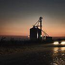 Evening drive by Milos Markovic