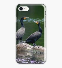 Two Double Crested Cormorants iPhone Case/Skin