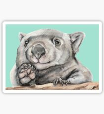 Lucy the Wombat - Teal Sticker