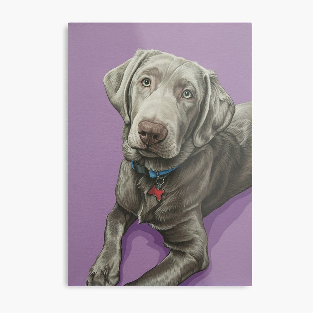 English Picture Print Labrador Retriever Puppy Dog Puppies Dogs Poster Art
