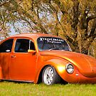 Punch Buggy...Awesome!! by Gary Paakkonen