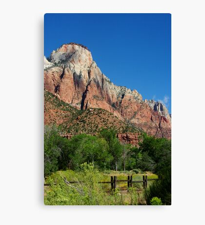 Stroll in the Park ~ Zion Canvas Print
