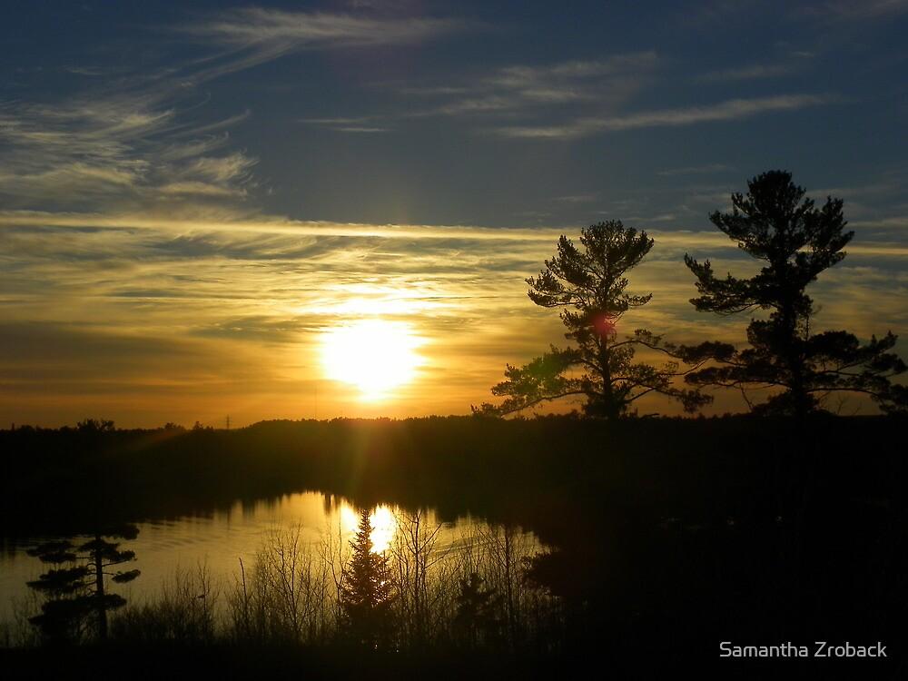Soak up the Sun! by Samantha Zroback