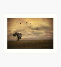 Shadows from the sky Art Print