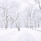 Winter - Central Park - New York City by Vivienne Gucwa