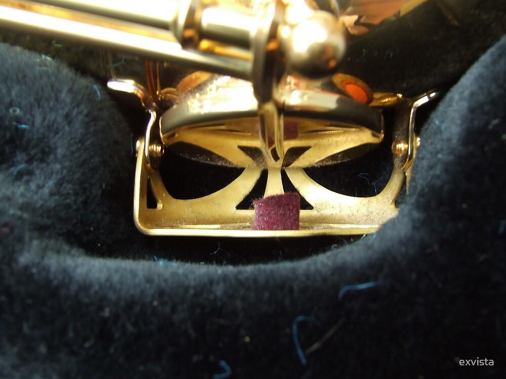 Alto Saxophone 05 by exvista