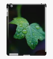 I only went out for a walk and finally concluded to stay out till sundown, for going out, I found, was really going in. iPad Case/Skin