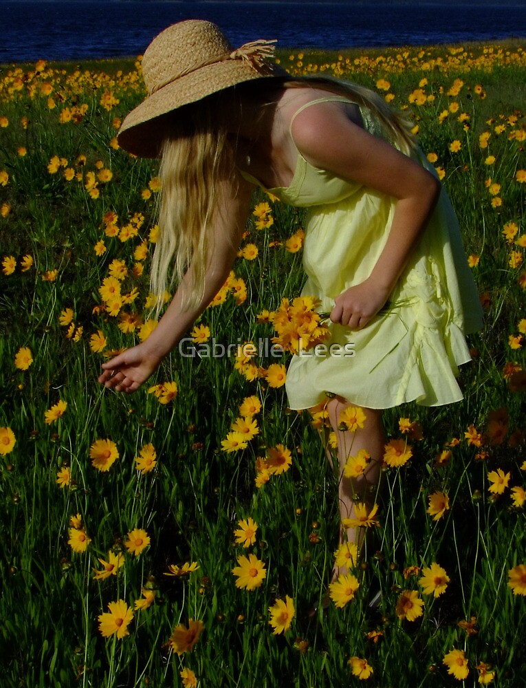 Don't Pick the Daisies! by Gabrielle  Lees