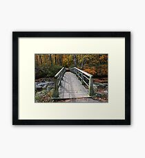 Over The Creek And Into The Woods Framed Print