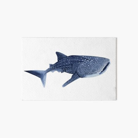WHALE SHARK Art Board Print