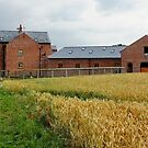 WALK MILL, Waverton, Chester by AnnDixon