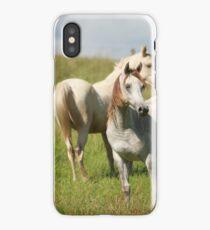 Fillies iPhone Case/Skin