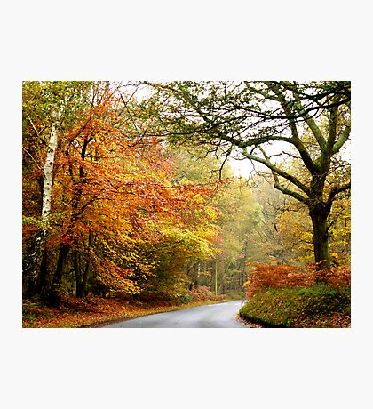 Road into Autumn Photographic Print